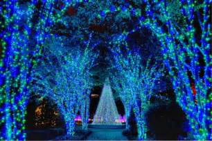 Lights Botanical Gardens Atlanta Beautiful Blue Lights At The Atlanta Botanical Gardens Hgtvgardens Gt Http Hgtvgardens