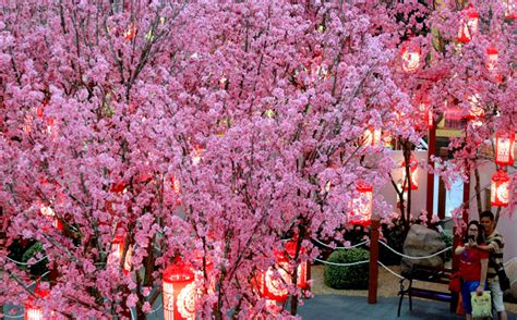 Hiasan Imlek Tempelan Imlek Dekorasi New Year 3 happy new year welcome the year of the