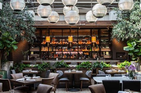 rooftop bars  chicago cool places  drink