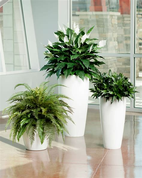 Vase Stands Lifelike Double Full Spathiphyllum Silk Floor Plant At Petals