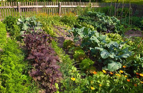 Vegetable Garden Weeds National Your Garden Day Southeast Agnet