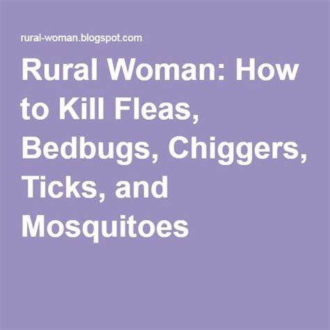 how to kill mosquitoes in home mosquitoes ticks and fleas on pinterest