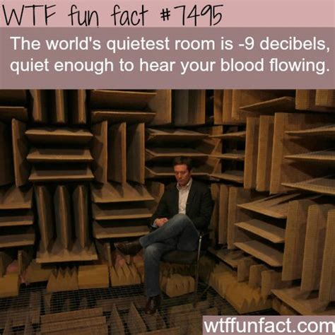 where is the quietest room in the world the 25 best facts ideas on interesting facts strange facts and