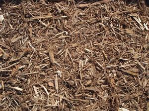 bark mulch vs rock mulch what type of mulch should i use