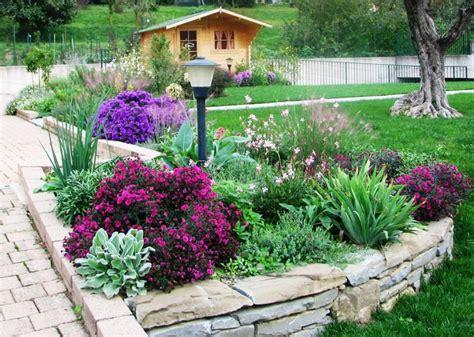 fiori per aiuola i nostri lavori per creazione giardini bordure miste