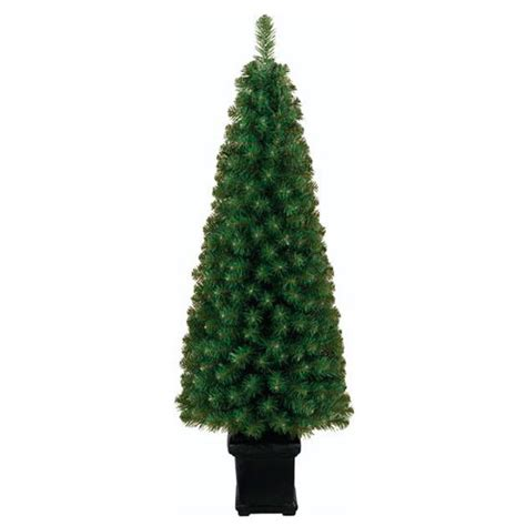topiary christmas tree from tesco christmas trees
