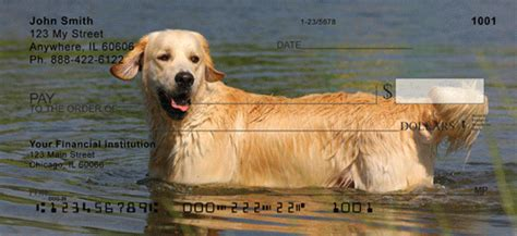 golden retriever personal checks golden retriever personal checks golden retriever checks designs doggiechecks