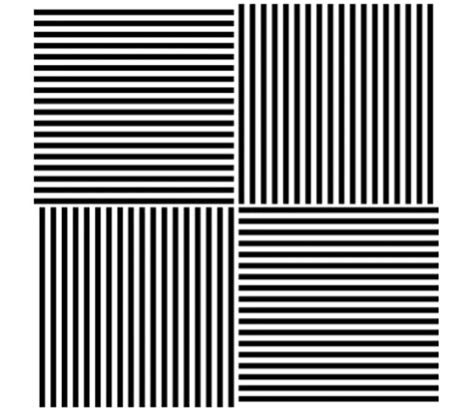 ilusiones opticas verne esta ilusi 243 n 243 ptica puede cambiar tu percepci 243 n de los