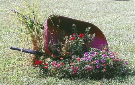 Wheelbarrow Planter Ideas by 25 Best Ideas About Wheelbarrow Planter On