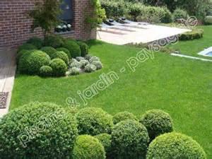 jardin moderne avec buis boule gazon et terrasse en bois