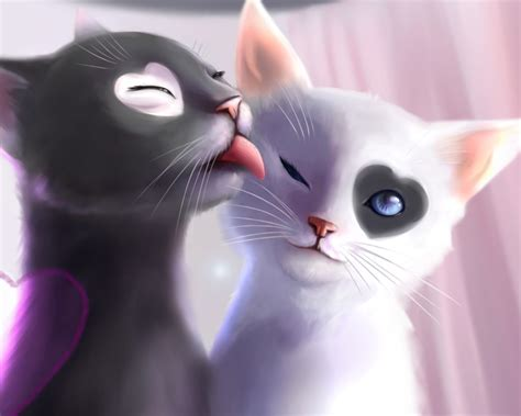 romantic couple wallpaper mobile9 black and white cats romance loving android wallpapers