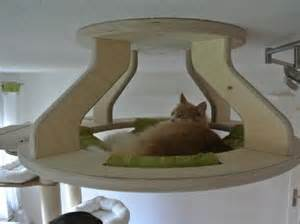 cat wall furniture this purrrrrfect cat furniture is simply miaow vellous