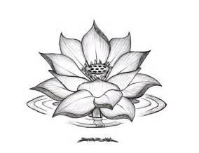 Lotus Flower Sketches Lotus Flower Drawings For Tattoos Lotus Flower Drawing