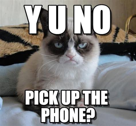 Grumpy Cat No Memes - pin grumpy cat no meme tumblr on pinterest