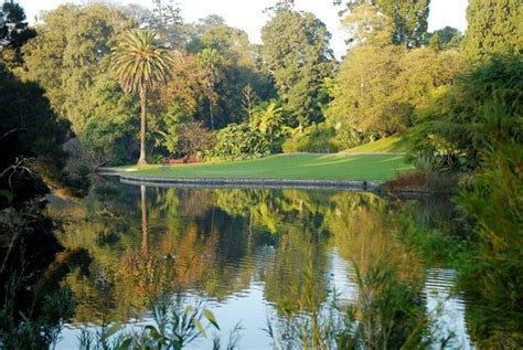 Melbourne Zoo Reviews Melbourne Victoria Attractions Royal Botanical Gardens Melbourne