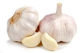 Promo Garlic Drliza jual kapsul bawah putih kapsul garlic dr liza
