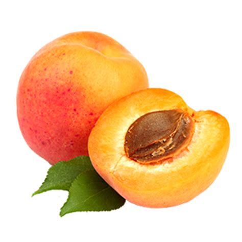imagenes en png de frutas frutas y verduras terrados frutas de hueso