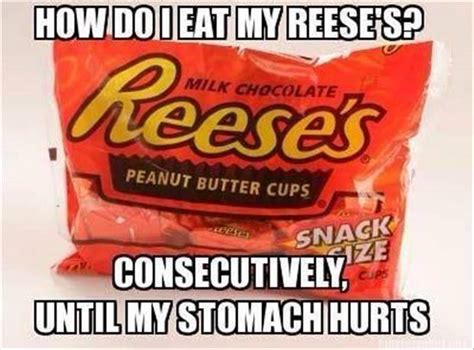 Reese Meme - funny pictures of the day 84 pics
