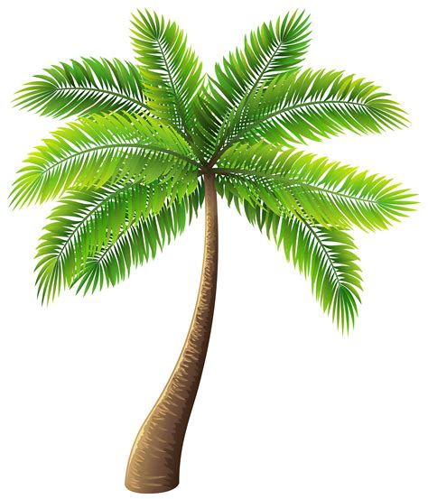 palm tree 59 free palm tree clipart cliparting com