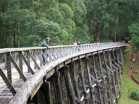 The Tool Shed Noojee by Trestle Bridge Image Mag