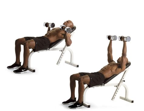 bench press and dumbbell press incline dumbbell bench press hc again fitness