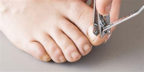 sejumlah fakta  kamu ketahui  memotong kuku jari tangan  kaki