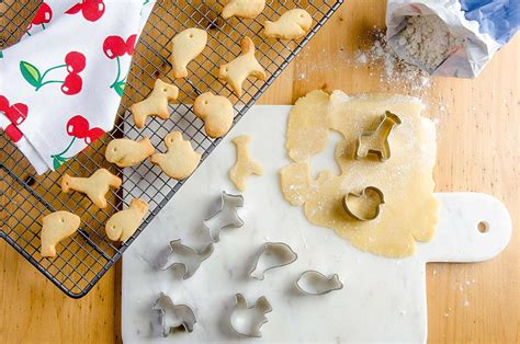 Cookies Cutter Animal Bulat mini animal cookie cutters allfreechristmascrafts