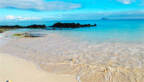 galapagos best islands galapagos islands beaches the best ones list