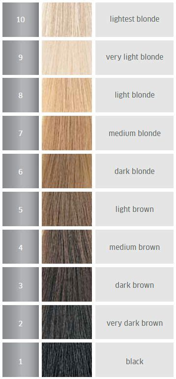 hair color levels hair color level chart how to choose the right hair