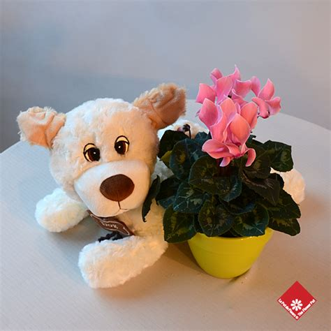 Stuffed Marijuana In Teddy Says Nick 2 by Montreal Stuffed Animals Plush Toys Teddy Bears 183 The