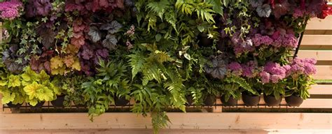 come realizzare un giardino verticale come realizzare un giardino verticale fai da te scelte