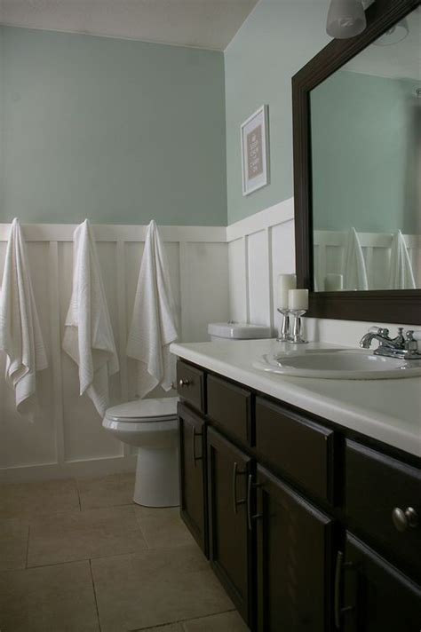 dark paint in bathroom sherwin williams sea salt great bathroom color or guest