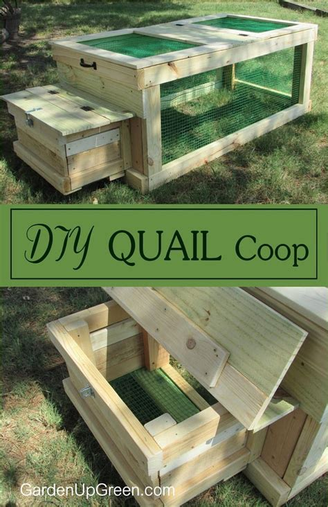 Quail Housing Plans 25 Best Ideas About Quail Coop On Quail
