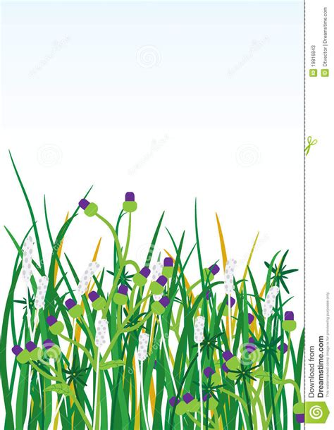Wild Grasses Flowers Background eps Stock Photos   Image