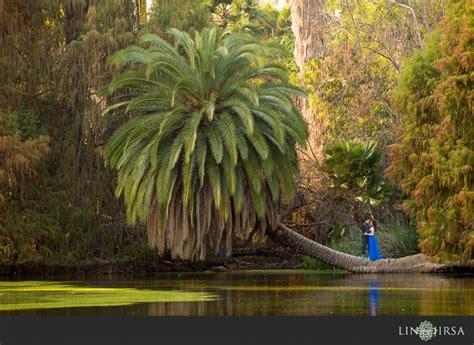 Los Angeles Arboretum Engagement Josh And Erica Los Angeles Botanical Garden