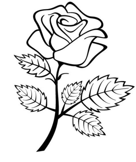 black and white coloring pages of roses flowers roses coloring pages for preschool coloring