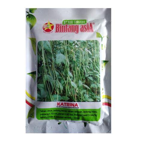 Benih Kacang Panjang Berkualitas jual benih kacang panjang 100 gram bintang asia