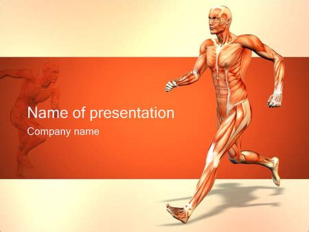 Report Template For Musculoskeletal System Muscular System Powerpoint Template Backgrounds Id