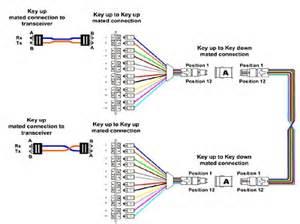 p25 wiring diagram honda motorcycle repair diagrams elsavadorla