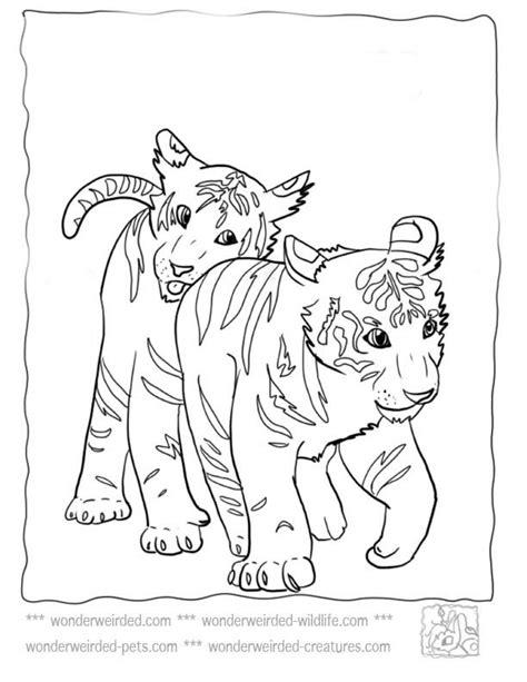 coloring pages lions tigers pinterest ein katalog unendlich vieler ideen
