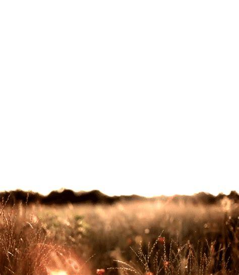 imagenes tumblr zarpadas paisajes gifs taringa