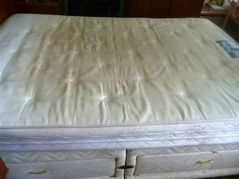 How To Clean A Pissy Mattress by 15 Hostel Nightmares 4alltravelers Page 12