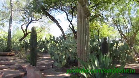 Ethel M Botanical Cactus Garden Las Vegas Youtube Botanical Cactus Gardens