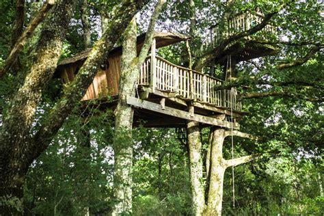 Treehouses by Cabane Dans Les Arbres Un Week End G 233 Nial Dans Le Berry