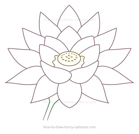libro drawing flowers lotus flower drawing los libros resumidos de resumelibros tk