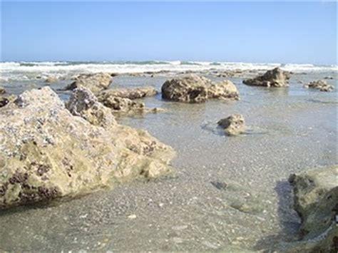bathtub reef stuart fl bathtubs florida and beaches on pinterest