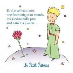 libro le prince de la magnet der kleinen prinz la rose du petit prince la boutique du petit prince