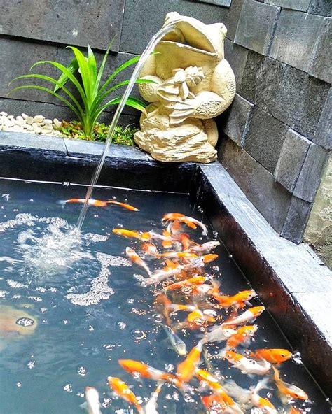 kolam ikan koi kolam ikan minimalis pinterest koi  house