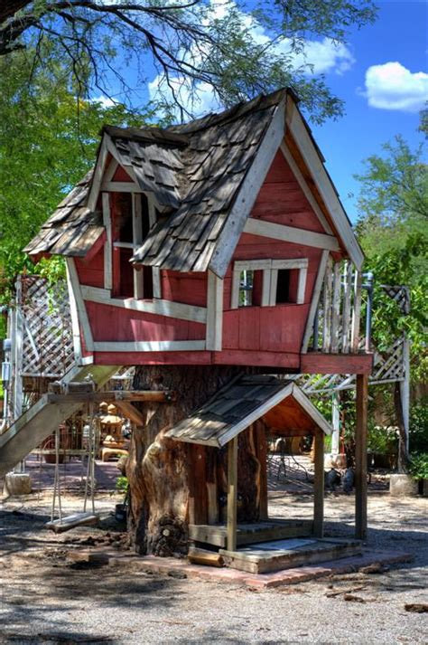 tree house real estate foreclosures are spoilers tucson real estate news