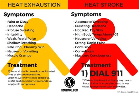 heat stroke the difference between heat exhaustion heat stroke the write therapy